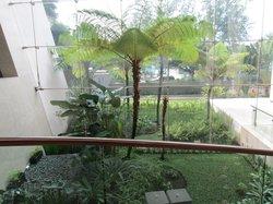 The lobby garden