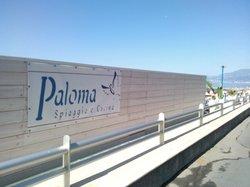 New Paloma
