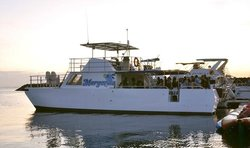 Big Sunset Dinner Cruise - BG Tours