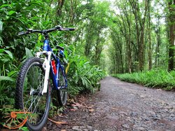 Mountain Bike Tours Colombia - RetroCiclas MTB Bike Tours