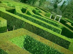 The aMazing Hedge Puzzle