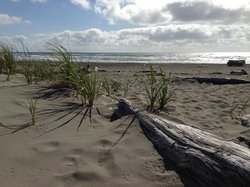 Twin Harbors Beach State Park
