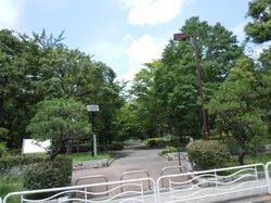 Kameido Chuo Park