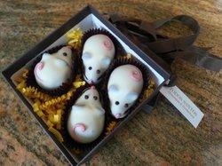 Todos Santos Chocolates and Confections