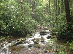 I nearby stream