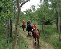 A&A Historical Trails Stables - Day Tours