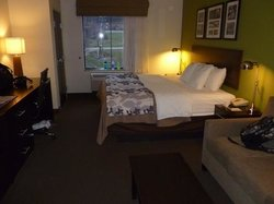 Room with King bed and foldout couch
