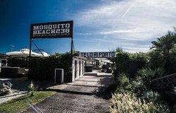 Mosquito Beach 236