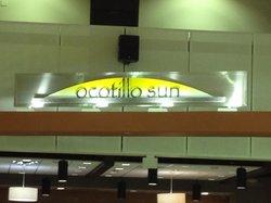 Ocotillo sun
