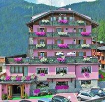 Alpen Hotel Vidi