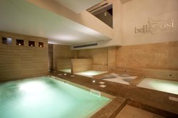 AQA EXCLUSIVE SPA -Bellicosi