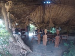 Lion King Bush Camp