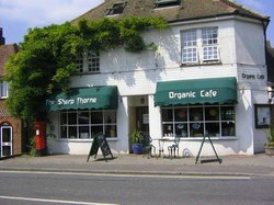 Sharp Thorne Organic Cafe