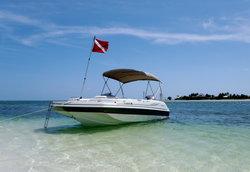 Island to Island Charters