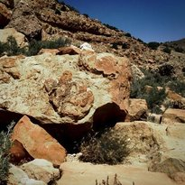Dinosaur Footprint Parowan Gap