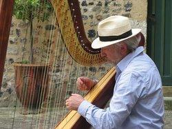 Luc Vanlaere Harpist
