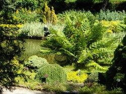 Trompenburg Gardens & Arboretum
