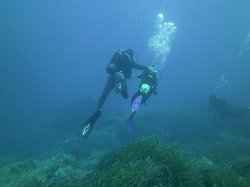 Ustica Diving