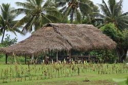 Aitutaki Punarei Culture Day Tour