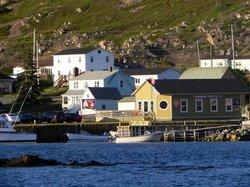 le restaurant offre aussi en saison des croisières aux icebergs
