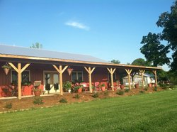 Buffalo River Farm and Studio Bed and Breakfast