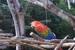 ZooFIT - Zoologico de Santarem