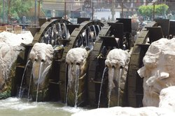 Waterwheels in Al Faiyum