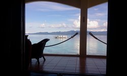 Sogod Bay Scuba Resort Restaurant