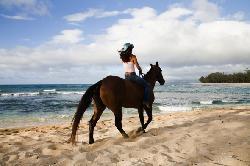 Oahu Horseback Rides
