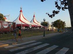 Circo Alegria
