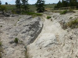 Oregon Trail Ruts & Register Cliff
