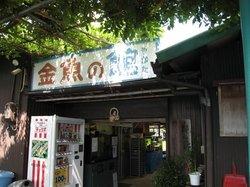 Koriyama Goldfish Museum