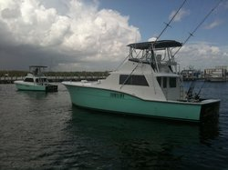 Sea Cross Miami Deep Sea Fishing Charters