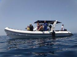 Mawimbi Whale Sharks Tour