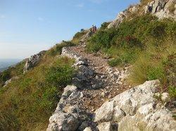 CR7 Es Galatzo - S'Esclop Trail