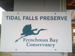 Tidal Falls Preserve