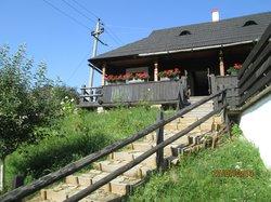 House Zenovia