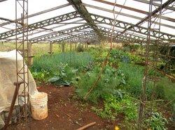 Chacra Suiza Farm