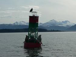 Juneau Adventures
