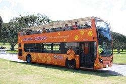 威基基观光巴士