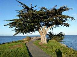San Bruno Point Park