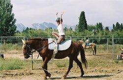 Centre Equestre d'Eygalieres Les Grandes Terres