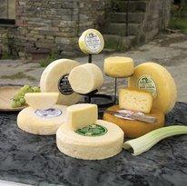 PantMawr Farmhouse Cheese