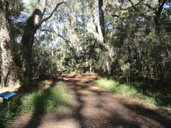 Guana Pine State Park and Wildlife Management Area