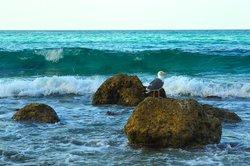 Arher Beach