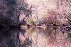 Santa Fe Canoe Outpost day trips