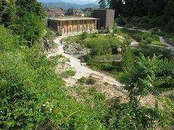 Botanic Garden (Botanischer Garten)