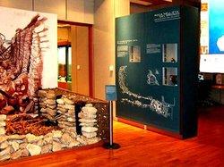 Musa - Museo Storico Archeologico