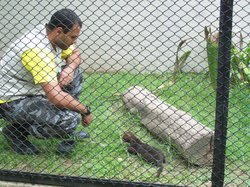 Zoológico Municipal