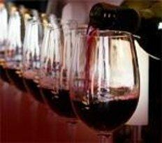 Wine Tasting in Nice